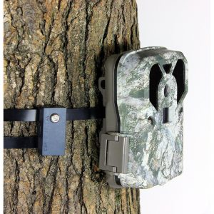 trail-camera-lock-cam-guardian