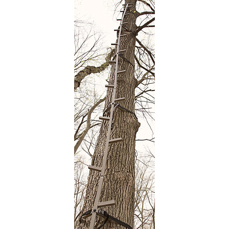 Best Tree Stand For The Money 2019 Tree Stand Reviews