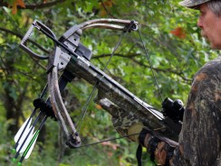 The Best Crossbows Across Multiple Price Points