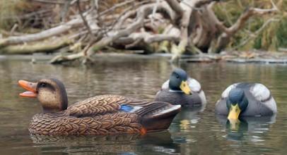 Best Duck Decoy – Rankings & Buying Guide